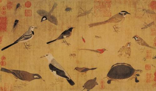 HuangQuan-xiesheng