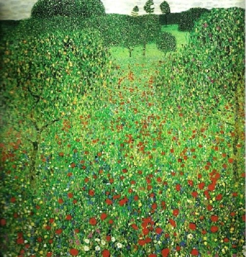 Gustav Klimt (1862-1918).  Poppy Field 1907