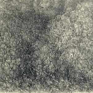 טיכו. 1965