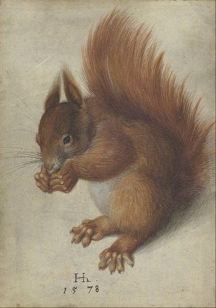 Hoffmann.1578